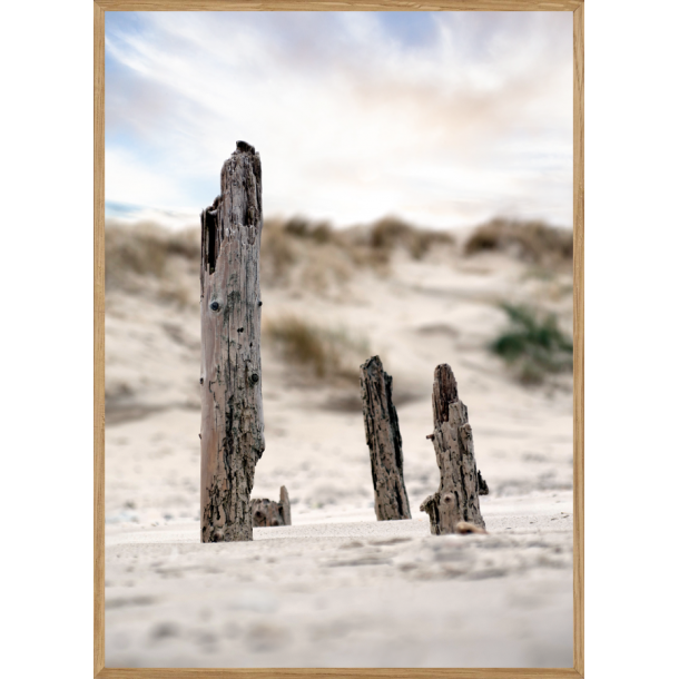 SAND STICKS - NATURPLAKAT
